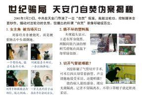 (2020年07月14日) 卡片: 世纪骗局 天安门自焚伪案揭秘